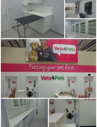 Pets at Home, Harrogate